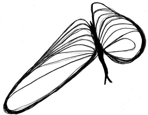 Psicografía de la Mariposa