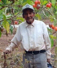 Ángel Ibarra Quispe (87 años)